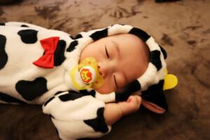 スタジオバンビ鈴鹿/お宮参り写真撮影。着物の後に牛の着ぐるみで撮影。