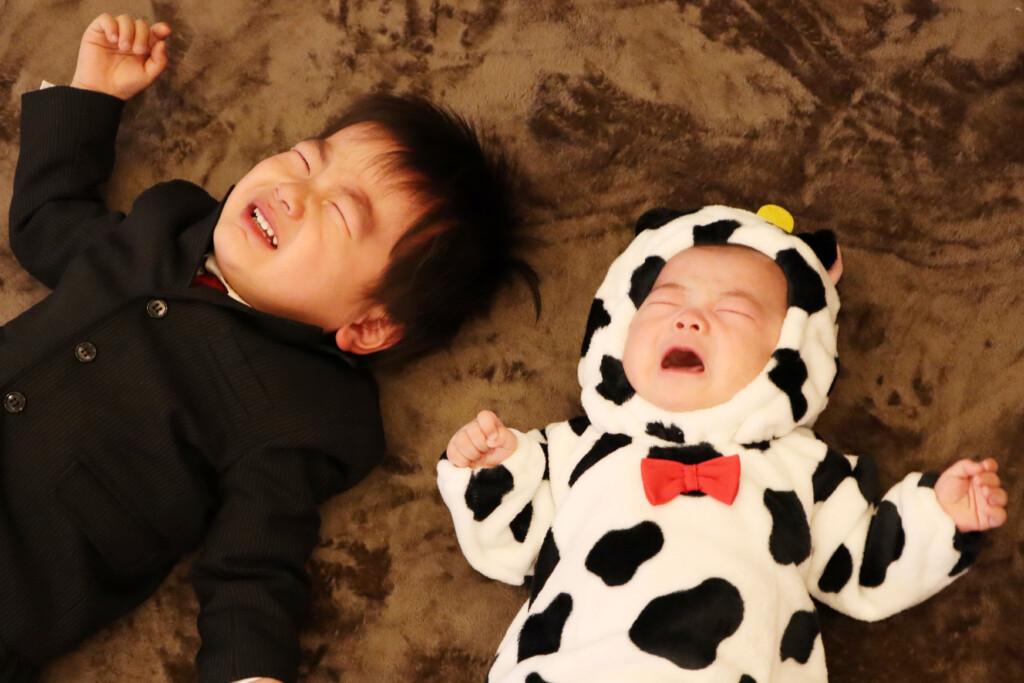 スタジオバンビ鈴鹿/お宮参り撮影の後、牛の着ぐるみを着て撮影。お兄ちゃんもまだ2歳。午前中にお参りに行って疲れたこともありおうち帰りたいと泣いちゃいました。つられて弟ちゃんも。涙の合唱です。アップで撮影